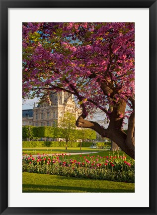 Framed Evening in Jardin des Tuileries Print