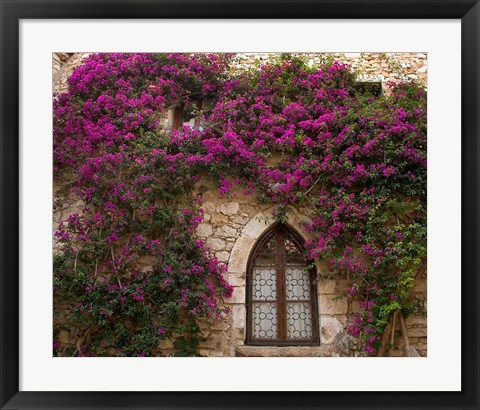 Framed Bright Pink Bougainvillea, Eze, France Print