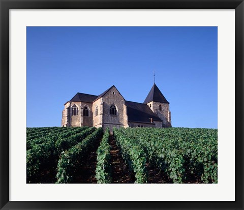 Framed Chavot Church and Vineyards, France Print