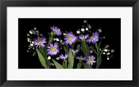 Framed Asters & Baby's Breath 2 Print