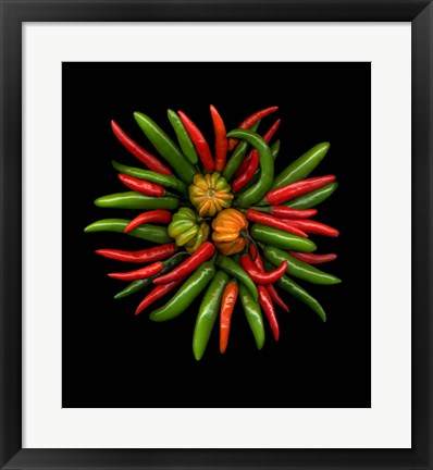 Framed Hot Peppers 1 Print
