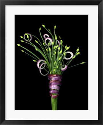 Framed Chive Blossoms & Red Onion Print