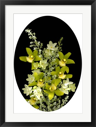 Framed Orchids & Paperwhites Print