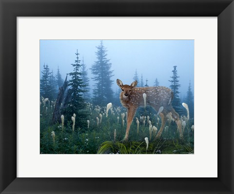 Framed Fawn Memories Print