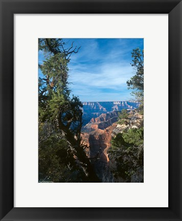 Framed Grand Canyon E Print