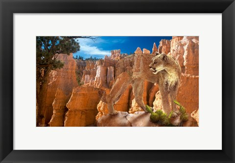 Framed Hidden Canyon 2 Print