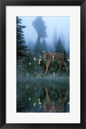 Framed Age Of Reflection Print