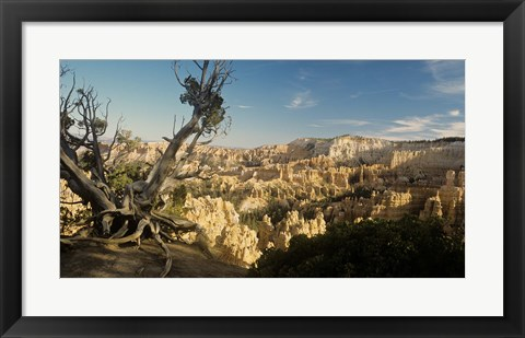 Framed Bryce Canyon E Print