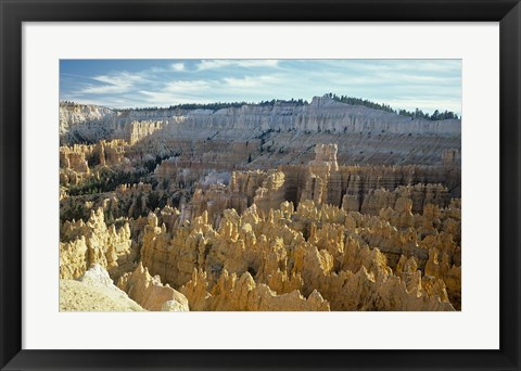 Framed Bryce Canyon C Print