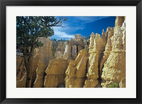 Framed Bryce Canyon F Print