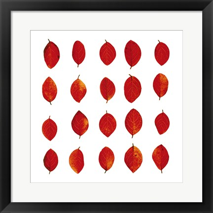 Framed Red Leaves Print