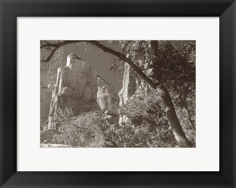 Framed Sepia Zion 2 Print