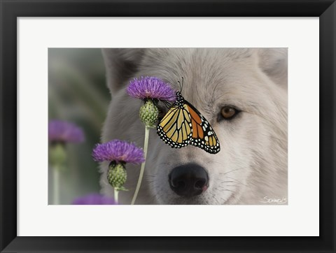 Framed Monarch and Wolf Print