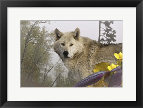 Framed White Wolf Print