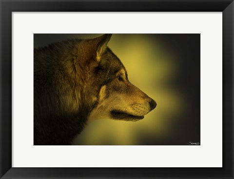 Framed Wolf Profile In Orange Fall Leaves Print