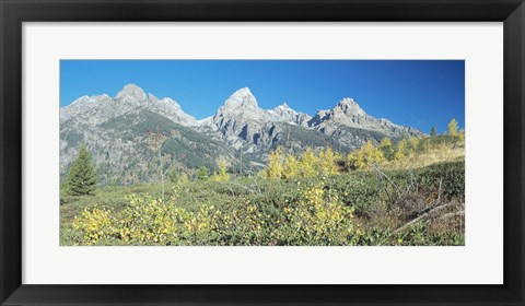 Framed Grand Teton 15 Print