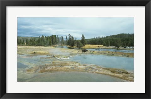 Framed Yellowstone 3 Print