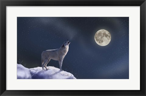 Framed Moon Dog Print