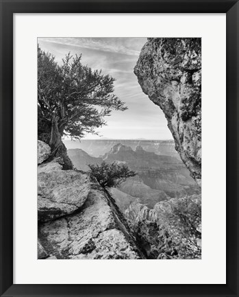 Framed Grand Canyon 7 Print