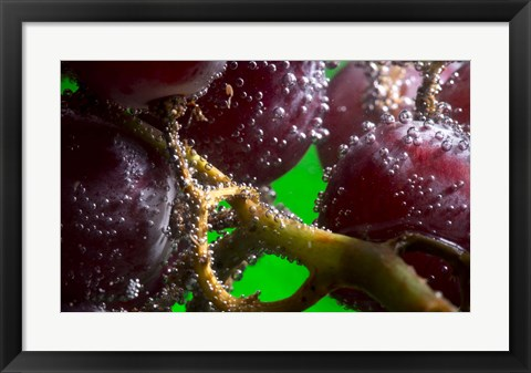 Framed Grapes Covered With Water Drops Closeup Print