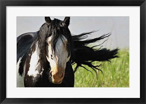 Framed Wildhorses 1 Print