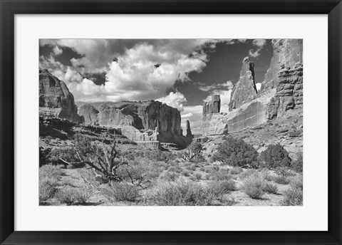 Framed Valley Of Rock And Shrubs Print