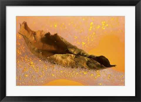 Framed Yellow Fall Leaf Floating In Bubbles II Print