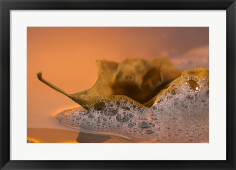 Framed Yellow Fall Leaf Floating In Bubbles I Print