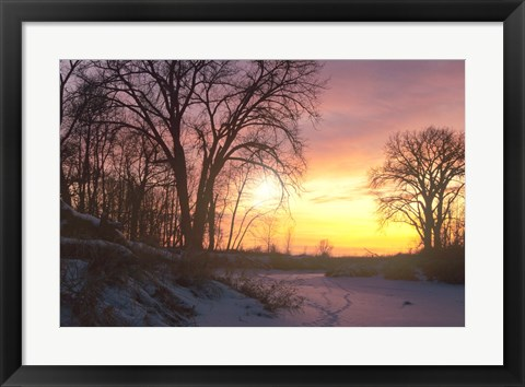 Framed Sunset And Tree Silhouettes In Snow II Print