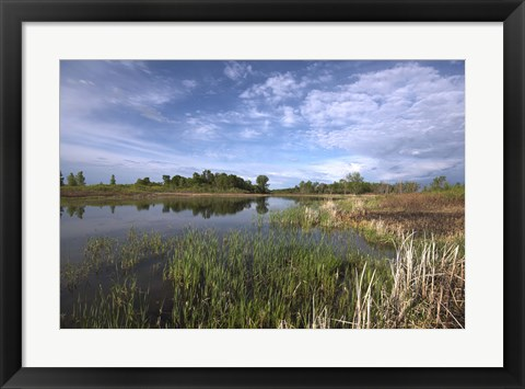 Framed Blue Sky And Lake Landscape Print