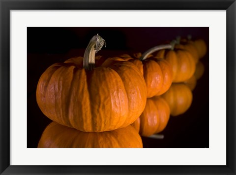 Framed Pumpkin Reflections Print