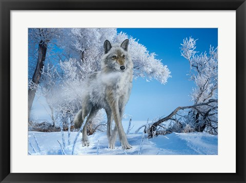 Framed Frosted Print