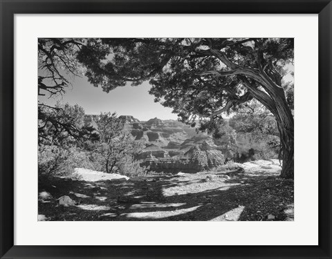 Framed Grand Canyon 8 Print