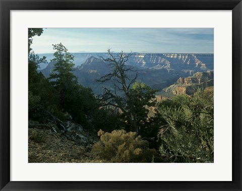 Framed Grand Canyon 3 Print