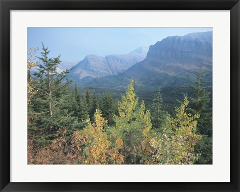 Framed Blue Mountains And Fall Trees Print