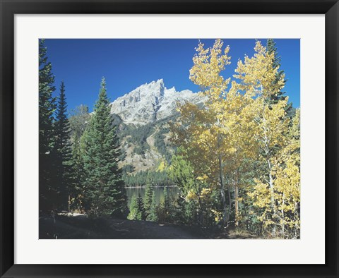 Framed Grand Teton 12 Print