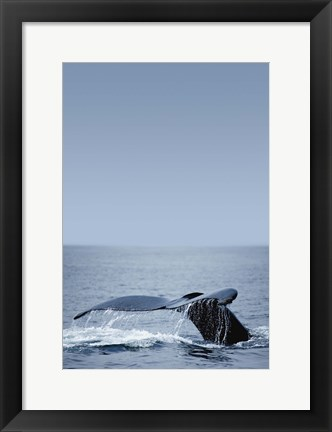 Framed Whale Tail And Sea Vertical Print