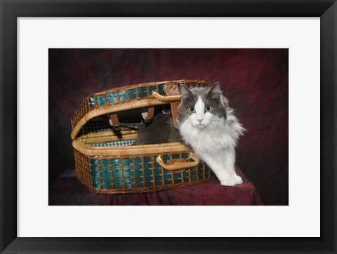 Framed Cat Picnic Basket Print