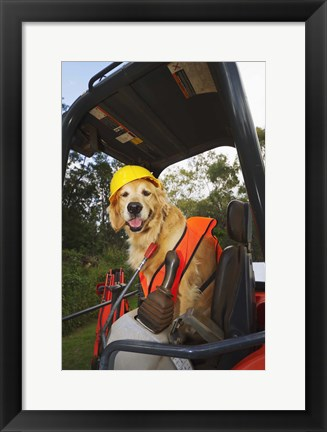 Framed Canine Construction II Print