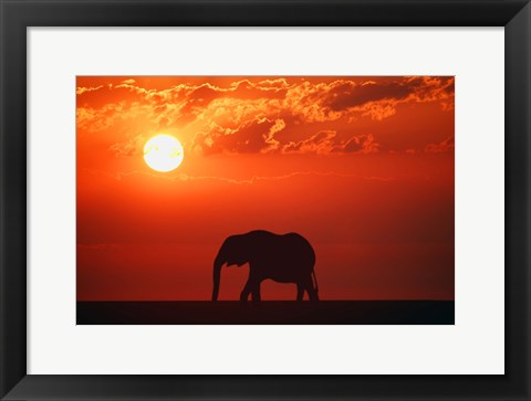 Framed Elephant Sunset Silhouette Print