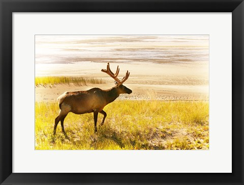 Framed Caribou In Yellow Field Print
