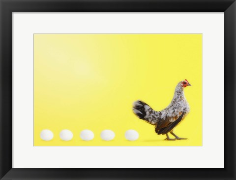 Framed Hen Or The Egg Print