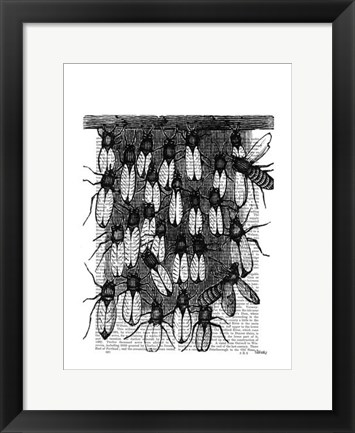 Framed Bee and Honeycomb Print Print
