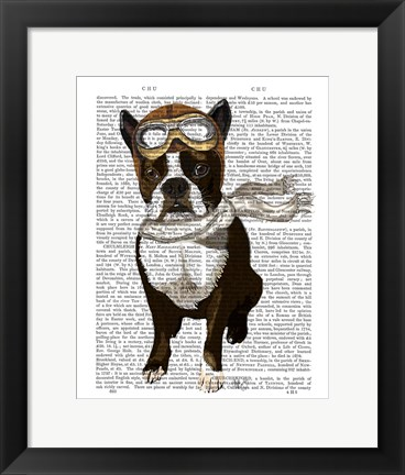 Framed Boston Terrier Flying Ace Print