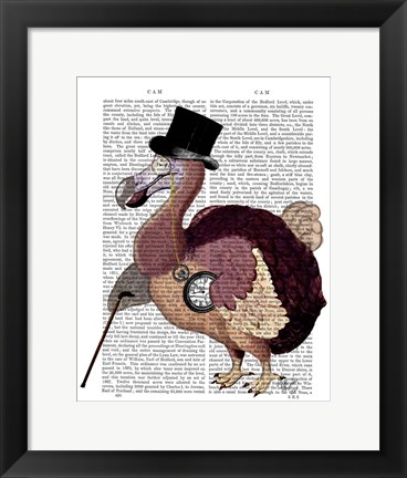 Framed Dapper Dodo Print