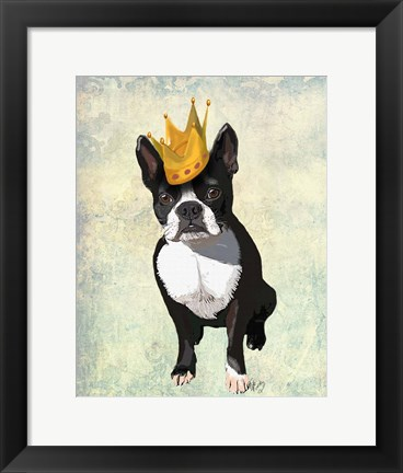 Framed Boston Terrier and Crown Print