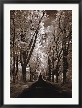 Framed Country Road II Print