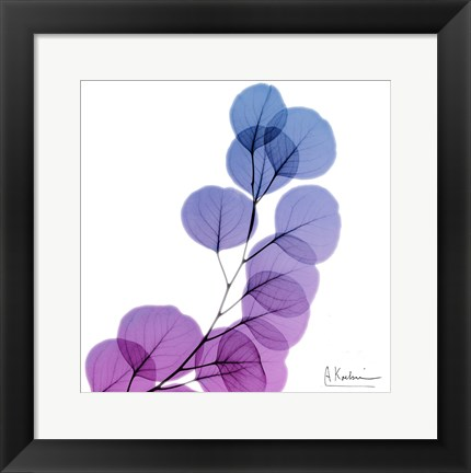 Framed Eucalyptus In Purple Print