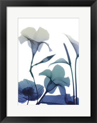 Framed Morning Bloom 1 Print