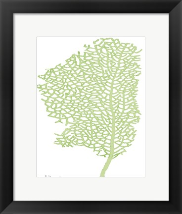 Framed Sea Fan 1 Print